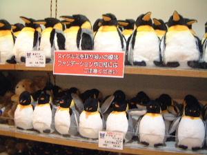 ペンギンぬいぐるみ購入